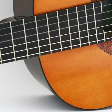 Qual violão devo escolher?